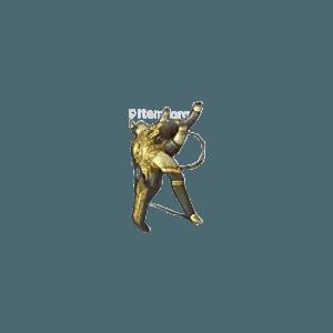 Diablo 3 Chanon Bolter look (icon)