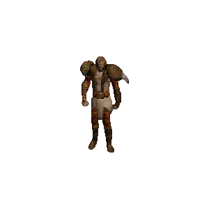 Diablo 2 Dru Fissure (LLD49) look (gear)