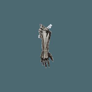Diablo 3 Rathma's Macabre Vambraces look (icon)