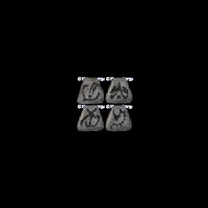 Diablo 2 Runes for Fortitude look (icon)