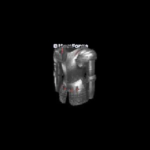 Diablo 2 Toothrow look (icon)