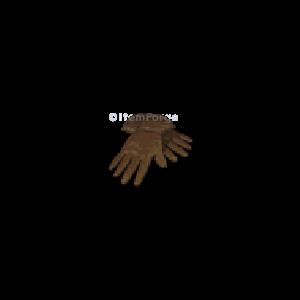 Diablo 2 Gloves 2sk / 20ias look (icon)